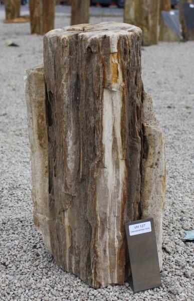 Versteinertes Holz ca. 27x22x50cm 2. Wahl