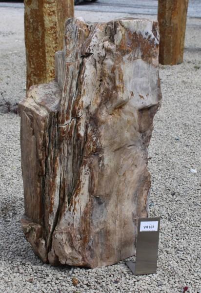 Versteinertes Holz ca. 32x20x60cm 2. Wahl