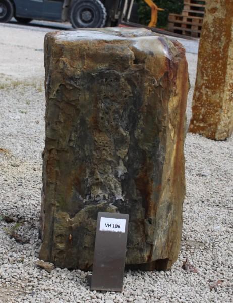 Versteinertes Holz ca. 30x23x46cm 2. Wahl