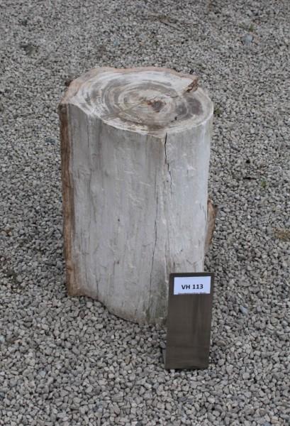Versteinertes Holz ca. 20x15x35cm 2. Wahl